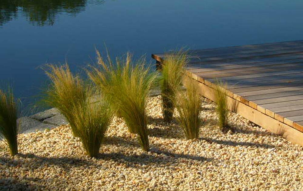 Teich gr ser und holzdeck eichhorn for Gartengestaltung 1230 wien