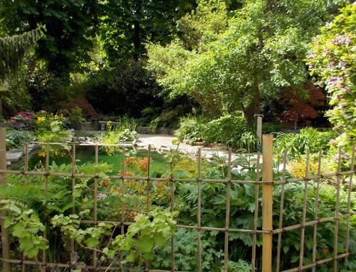 Schwimmteich in Innenhofgarten