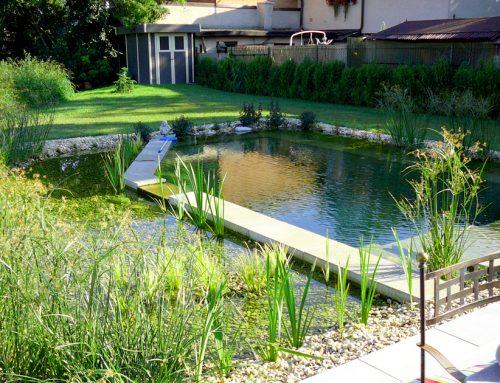 Formschönes Biotop mit Terrasse