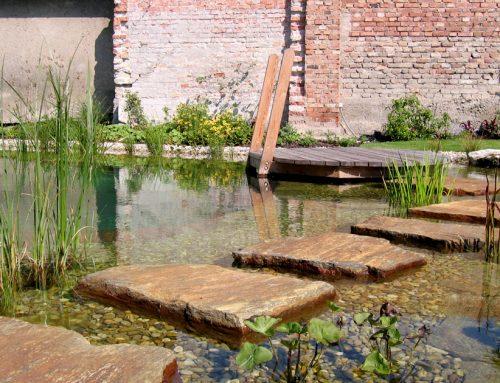 Schwimmteich mit Holzdeck und Steintrittplatten